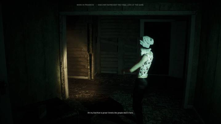 Cheats The Haunting: Blood Water Curse (EARLY ACCESS):