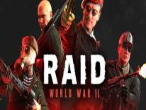 RAID: World War II: Cheats and cheat codes