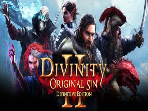 Divinity: Original Sin 2: Parcela do Jogo