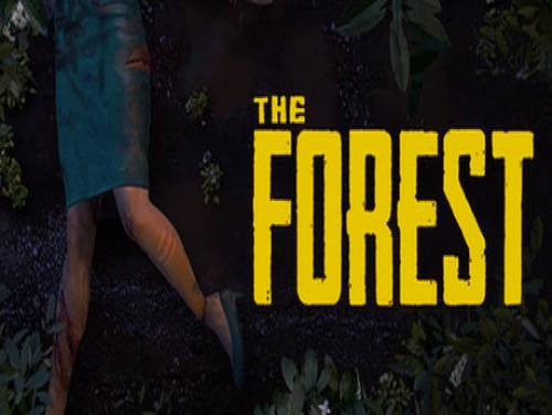 The Forest: Trama del Gioco