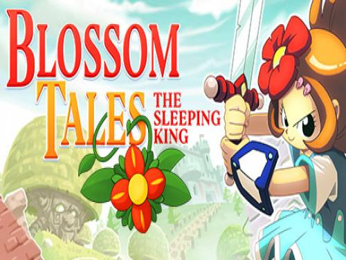 Blossom Tales: The Sleeping King: Plot of the Game