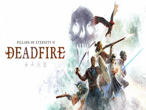 Pillars of Eternity II: Deadfire: Parte de Juego