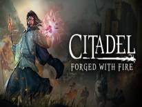 Citadel: Forged With Fire: Trucchi e Codici