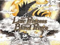 The Liar Princess and the Blind Prince: Trucchi e Codici