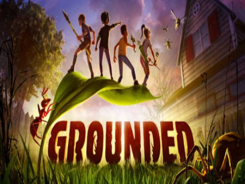 Grounded: Plot of the game