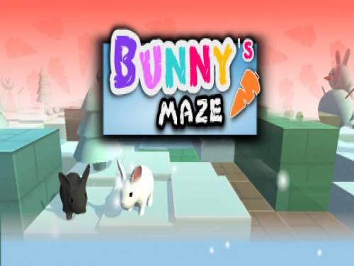 Bunny's Maze: Trama del juego