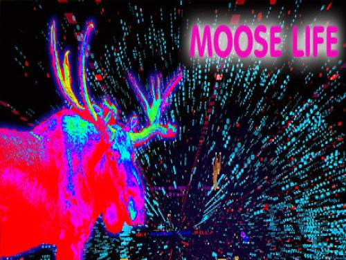Moose Life: Plot of the game