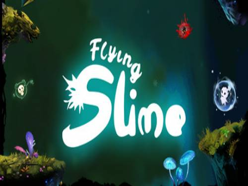 Flying Slime: Plot of the game