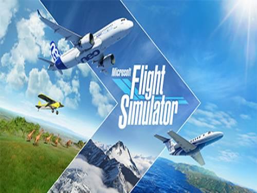 Microsoft Flight Simulator: Plot of the game