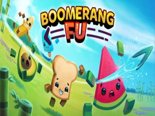 Boomerang Fu: Plot of the game