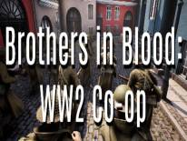 Brothers in Blood: WW2 Co-op: Trucchi e Codici