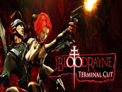 BloodRayne: Terminal Cut: Plot of the game