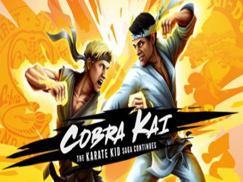 Cobra Kai: The Karate Kid Saga Continues: Plot of the game