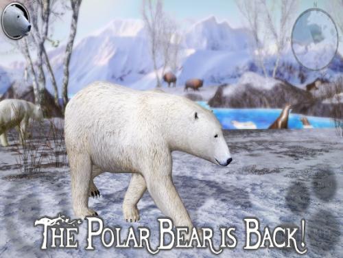 Polar Bear Simulator 2: Trama del Gioco