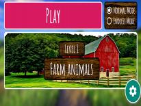 Animal Round: Trucs en Codes