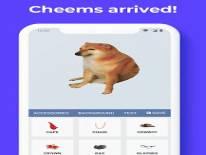 Dress Cheems: Коды и коды